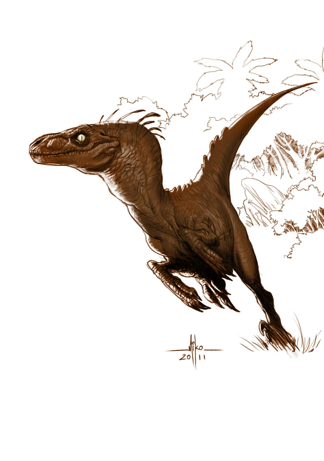 Drawn reptile raptor bird Pinterest terror 1241×1764 pixels ArtStation