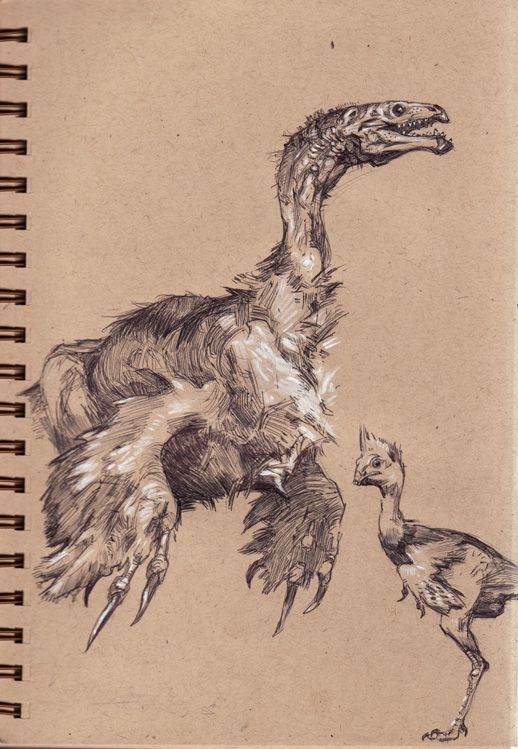 Drawn reptile raptor bird Images 252 on Pinterest Drawing