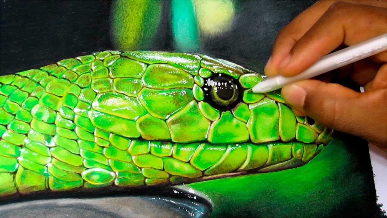 Drawn snake realistic Realistic Snake  How Time