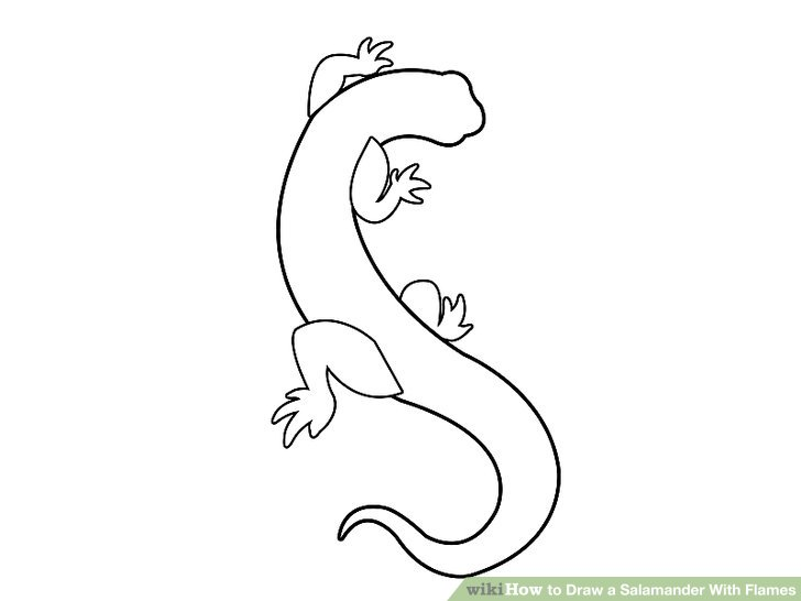 Drawn reptile salamander How 7 With Pictures) a
