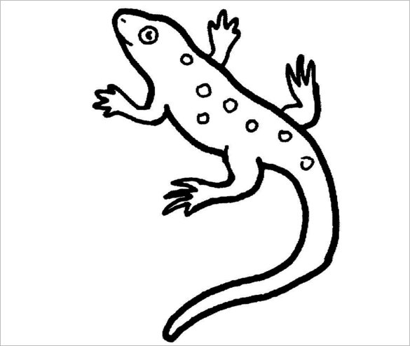 Drawn reptile salamander & Crafts 22+ Free Pages