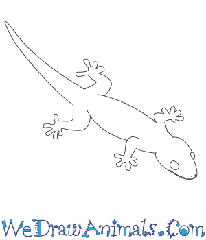 Drawn reptile simple Draw a to How