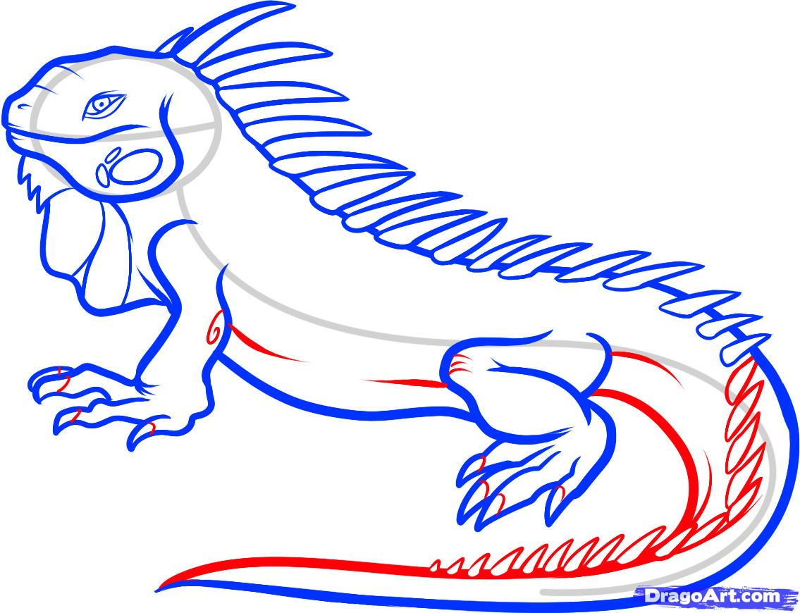 Drawn reptile small FREE  by how an