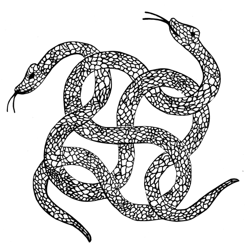 Drawn reptile stylized Represents that drawn into knot