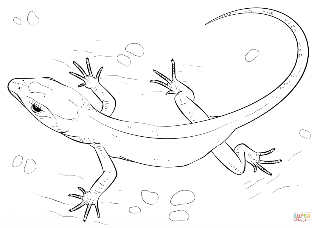 Drawn reptile yellow spotted Free Click the Lizard Pages