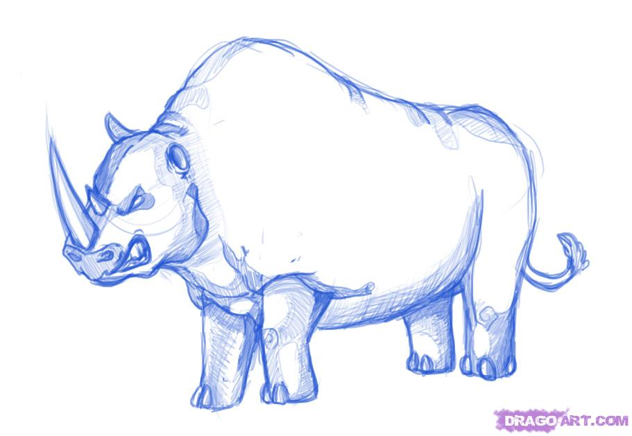 Drawn rhino sketch  Animals rhino how cartoon