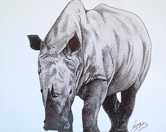 Drawn rhino africa Rhinoceros Pen Sketch drawing Rhino