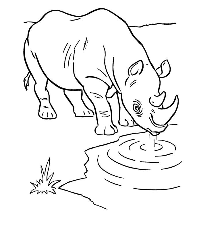 Drawn rhino african animal Template Template & African African