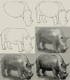 Drawn rhino african animal  Wild draw easy step