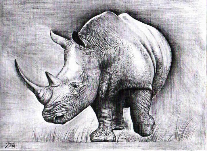 Drawn rhino african animal Drawing African Pinterest African 320
