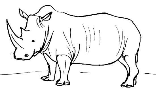 Drawn rhino african rhino How African Rhinoceros draw Rhinoceros