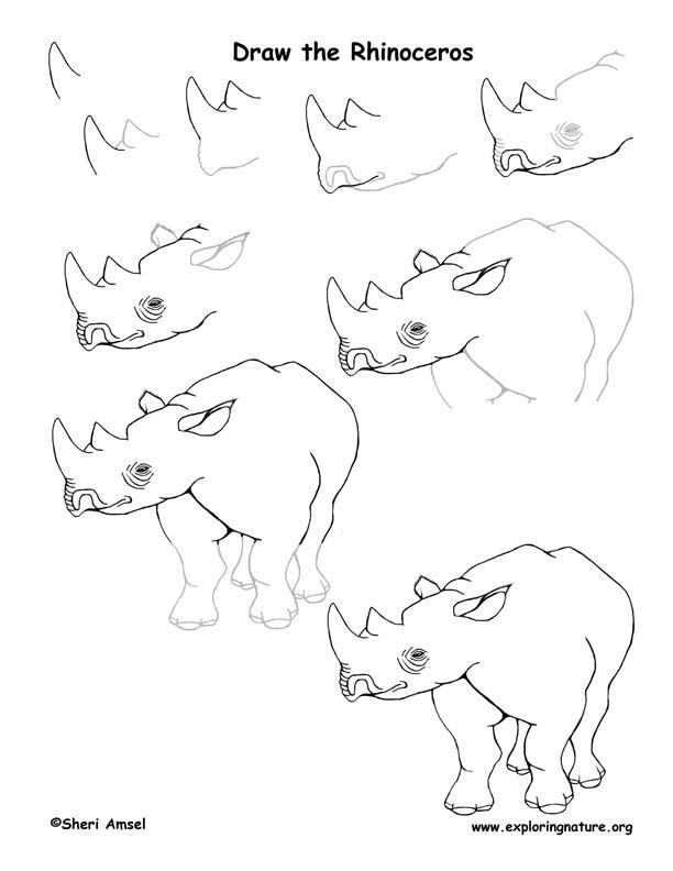Drawn rhino african rhino Drawing Rhinoceros Drawing Lesson Lesson