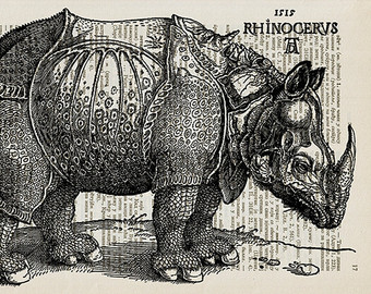 Drawn rhino albrecht durer Albrecht Drawing Rhinoceros Drawing Durer