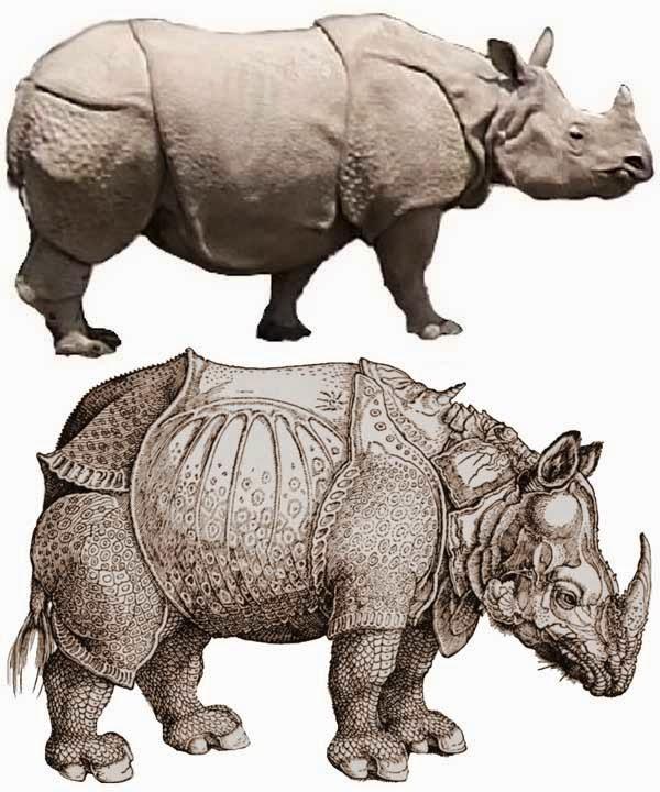 Drawn rhino armored Depiction Art artbouillon: armor into