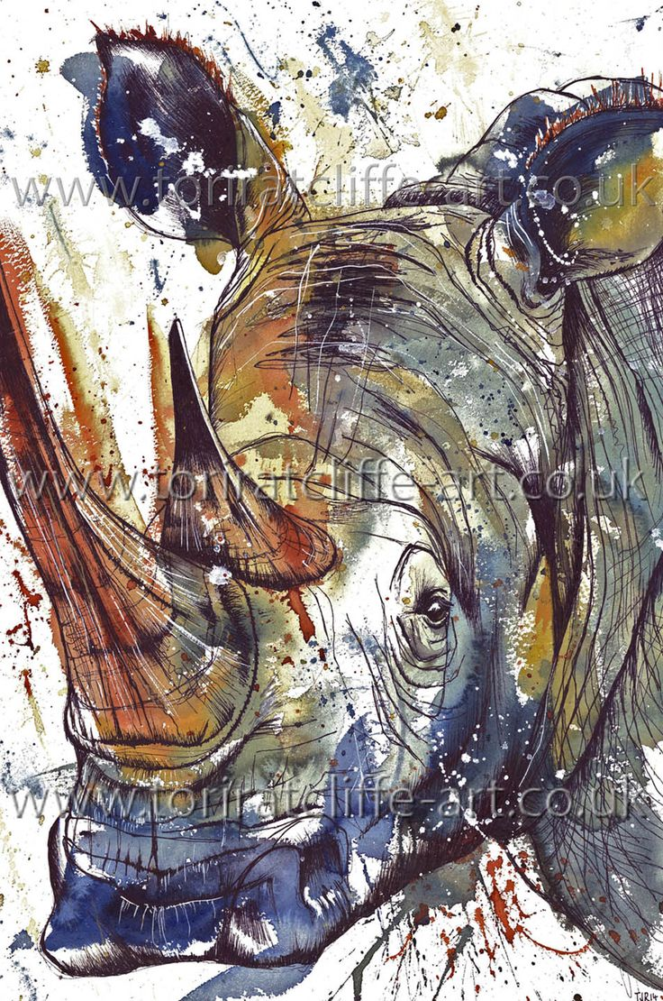 Drawn rhino battle Of helpingrhinos 289 best Watercolour