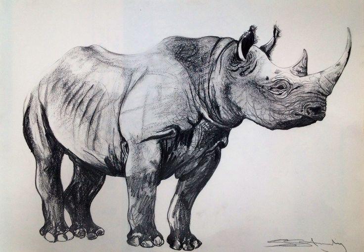 Drawn rhino black rhino Drawings Black rhino Pinterest
