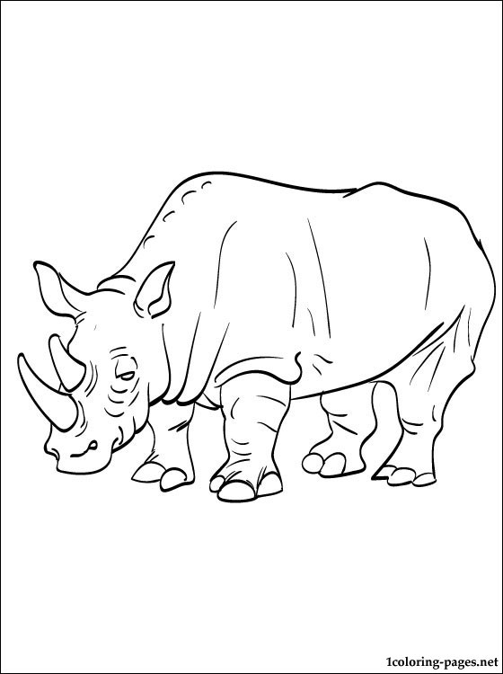Drawn rhino coloring Rhinoceros coloring pages pages coloring