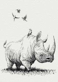 Drawn rhino draw a  or draw How draw