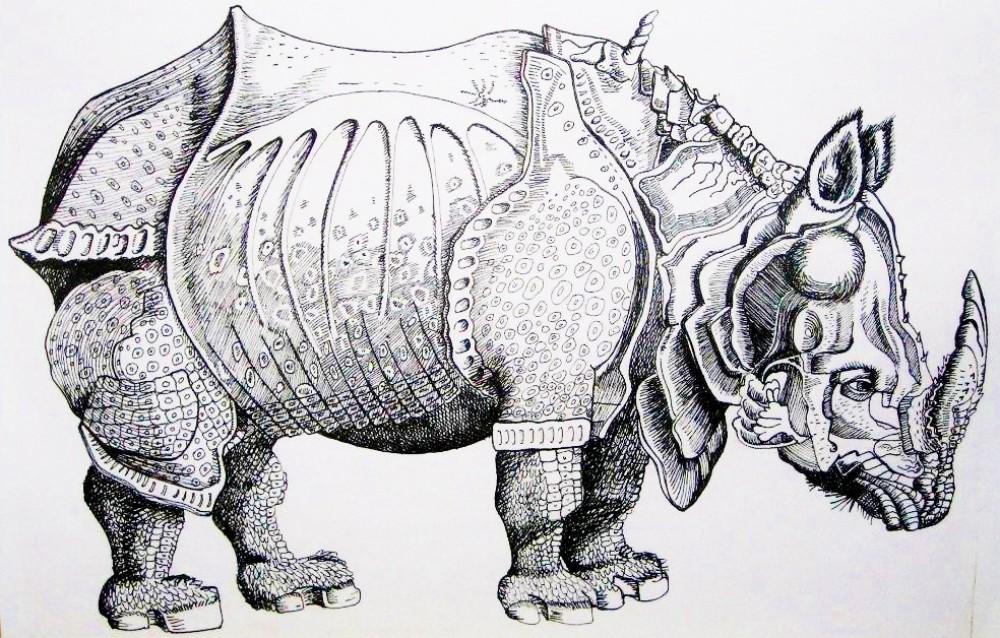 Drawn rhino durer rhino This by Parson's the was