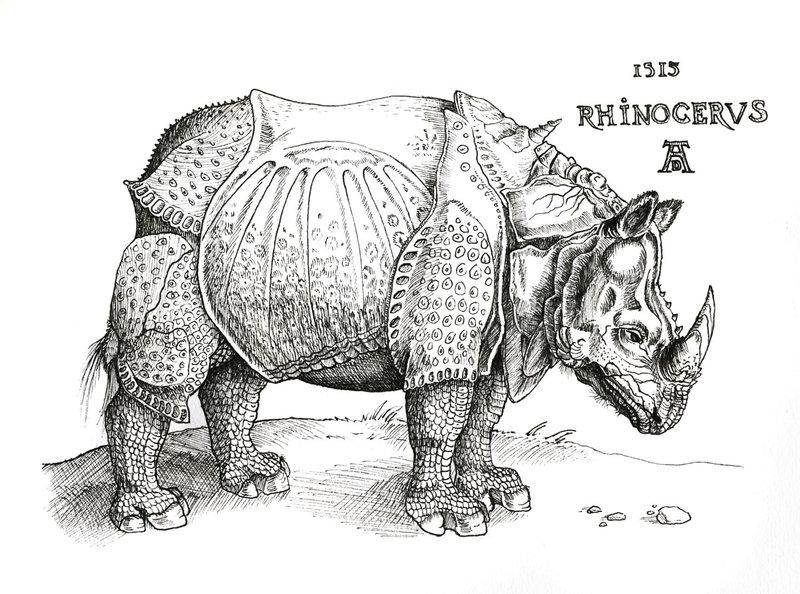 Drawn rhino durer rhino Durer's DeviantArt by Rhinoceros on