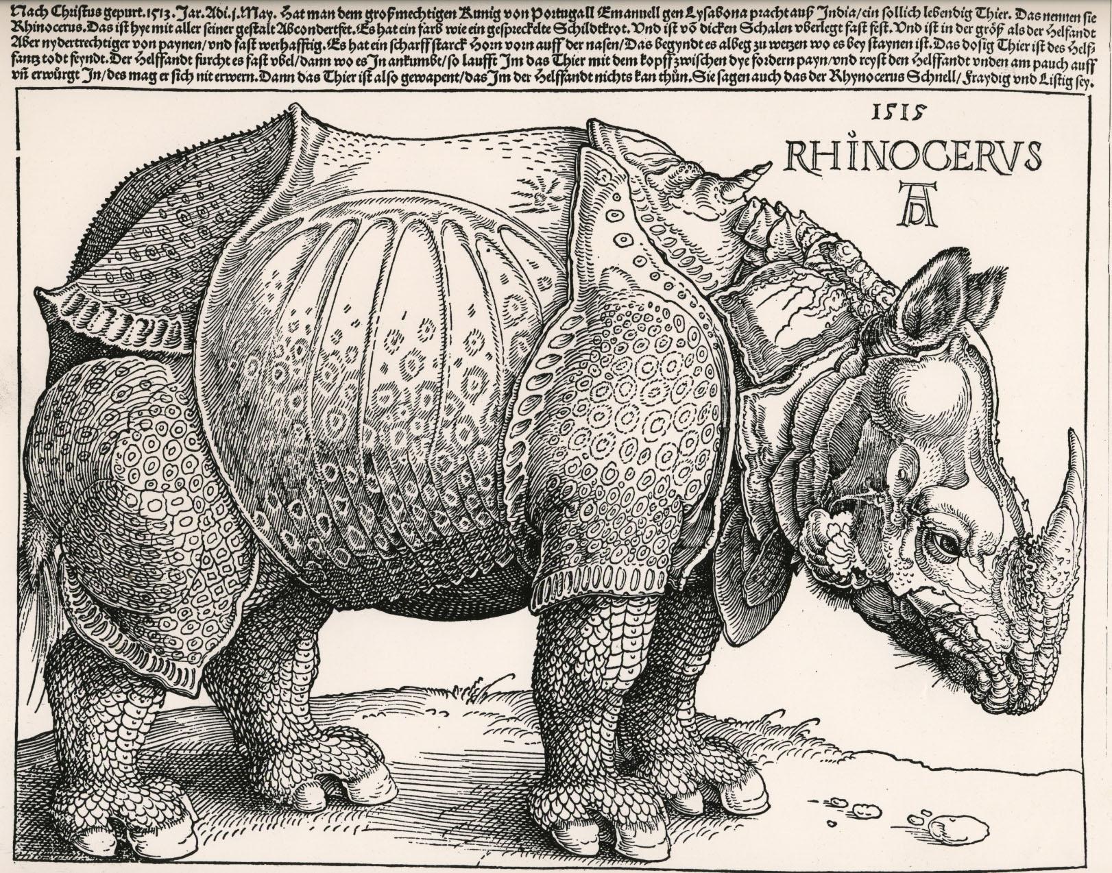 Drawn rhino durer rhino IUCN Entry Rhinoceros · Edited