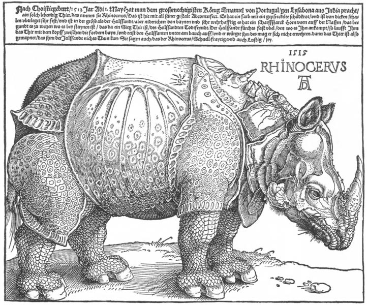 Drawn rhino durer rhino Rhinoceros the History Painting Albrecht