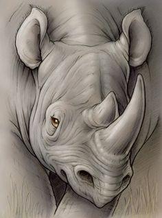 Drawn rhino face