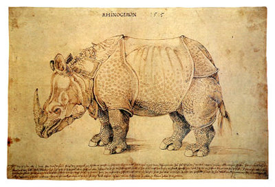 Drawn rhino famous (pen Albrecht ink) Dürer 'Rhinoceros'