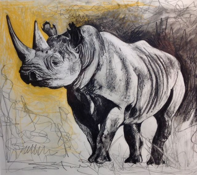 Drawn rhino famous Best on images Pinterest