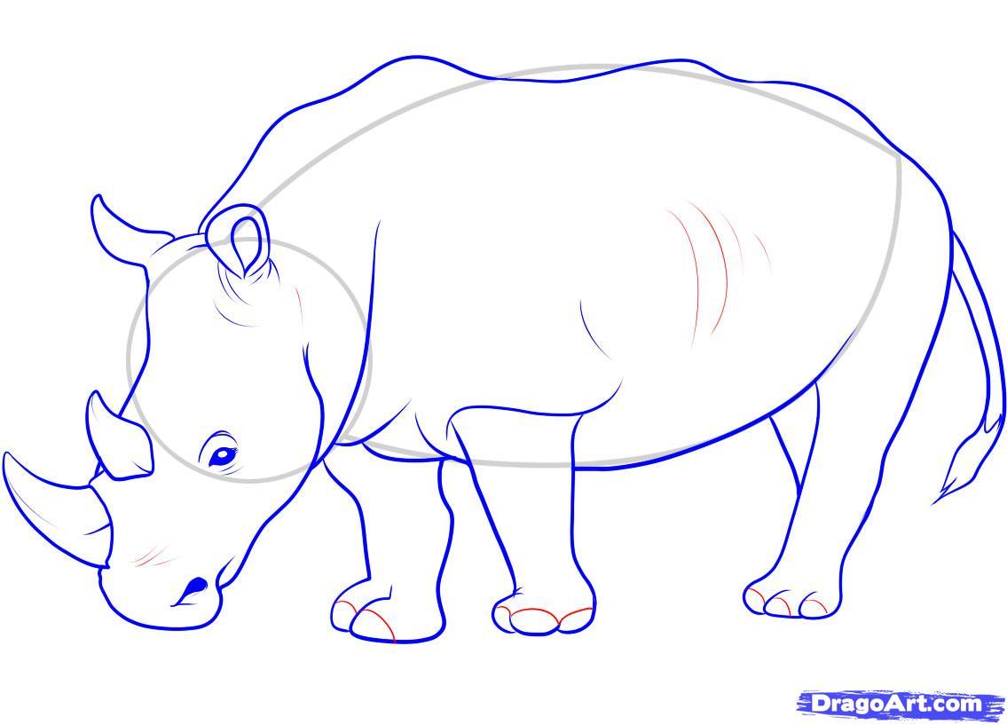 Drawn rhino horn rhino How a Plain  animals