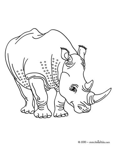 Drawn rhino jungle animal Rhinos Rhinoceros page on coloring