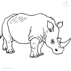 Drawn rhino jungle animal Pinterest >> page COLORINGPAGES on