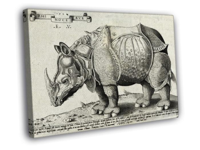 Drawn rhino medieval animal Print Ink Rhinoceros Albrecht Ink