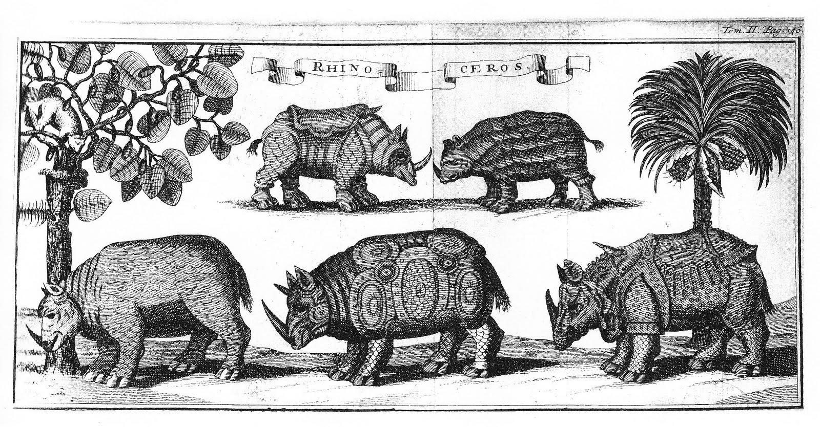 Drawn rhino medieval animal Of rhino species The claimed