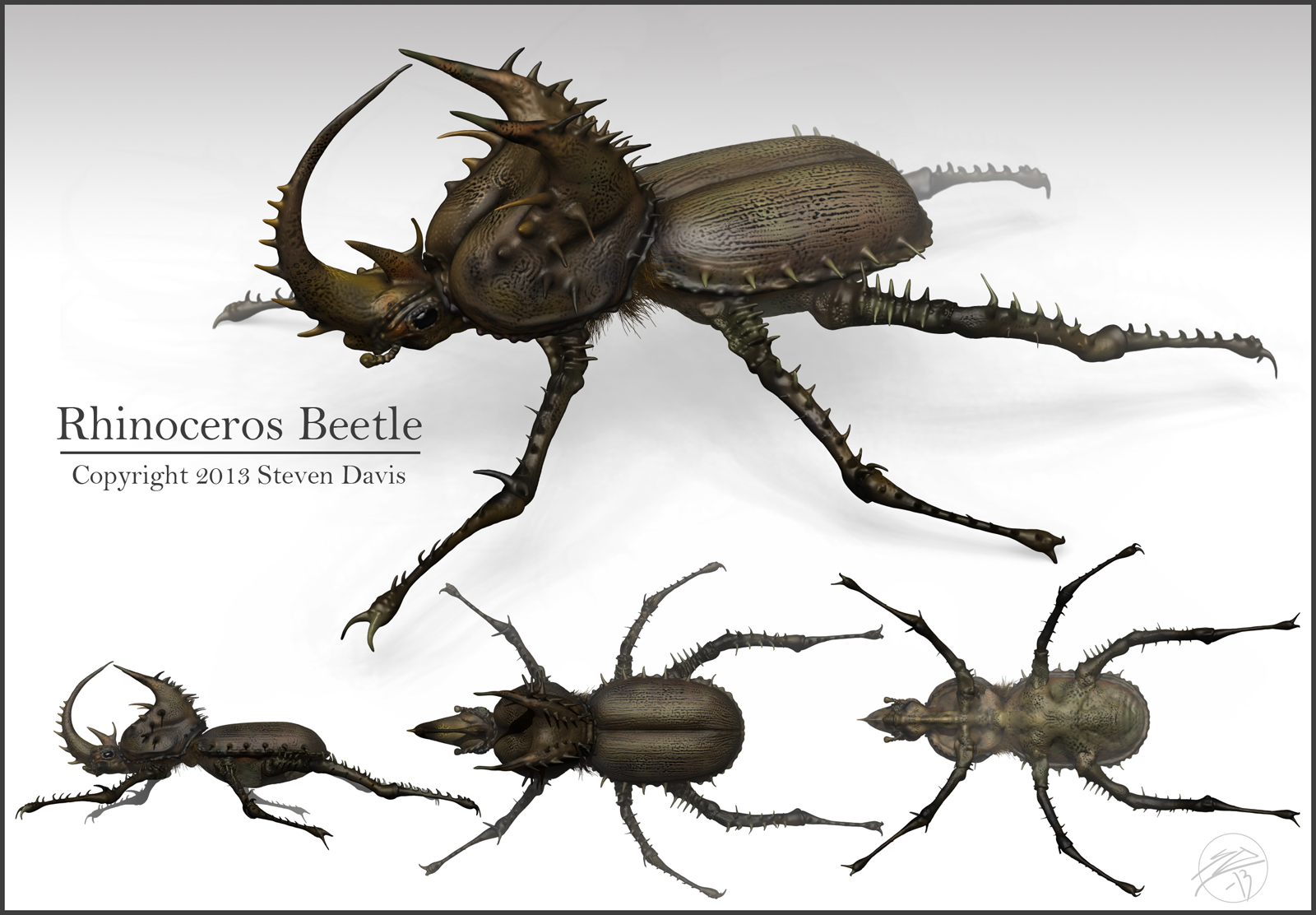 Drawn rhino monster Beetle beetle photo#23 Rhinoceros drawing