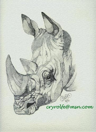 Drawn rhino realistic Images Attached Rhino WetCanvas Head