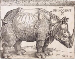 Drawn rhino realistic Rhinoceros The Dürer's Wikipedia Rhinoceros