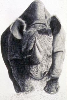 Drawn rhino realistic Drawing rhino by com on
