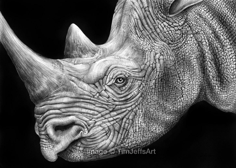 Drawn rhino realistic This Like Drawing Ink item?