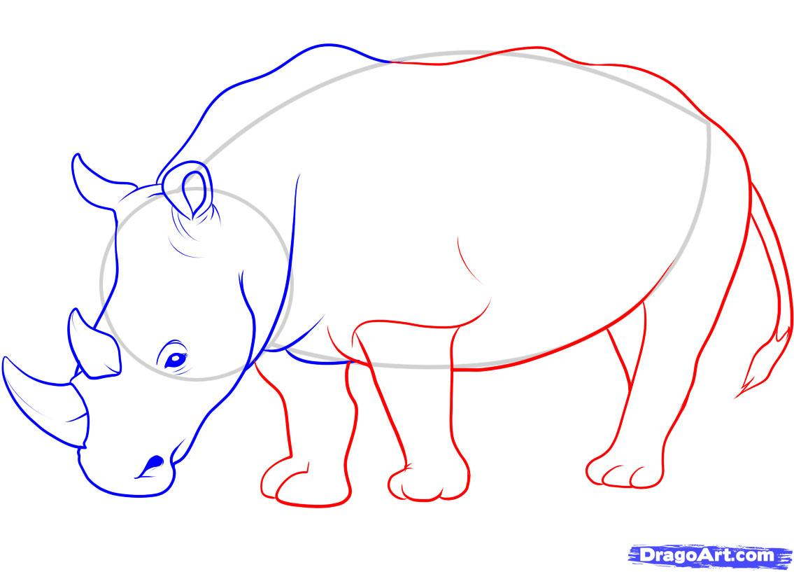 Drawn rhino rino 9 a to by Rhino