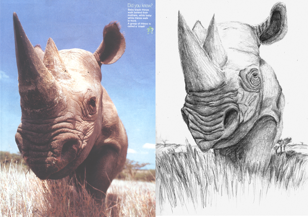 Drawn rhino rino Rhino by Drawing DeviantArt Fezzy