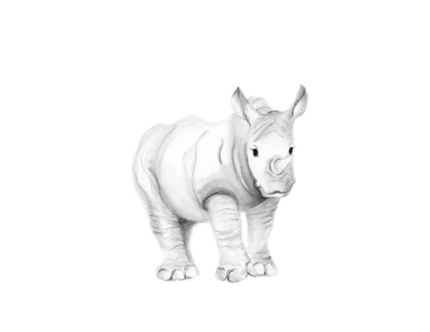 Drawn rhino sketch Art Like Nursery Nursery Jungle
