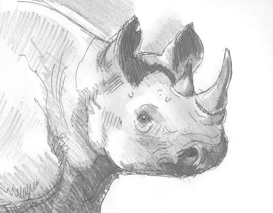 Drawn rhino sketch Mike Rhino by Mike Rhinoceros