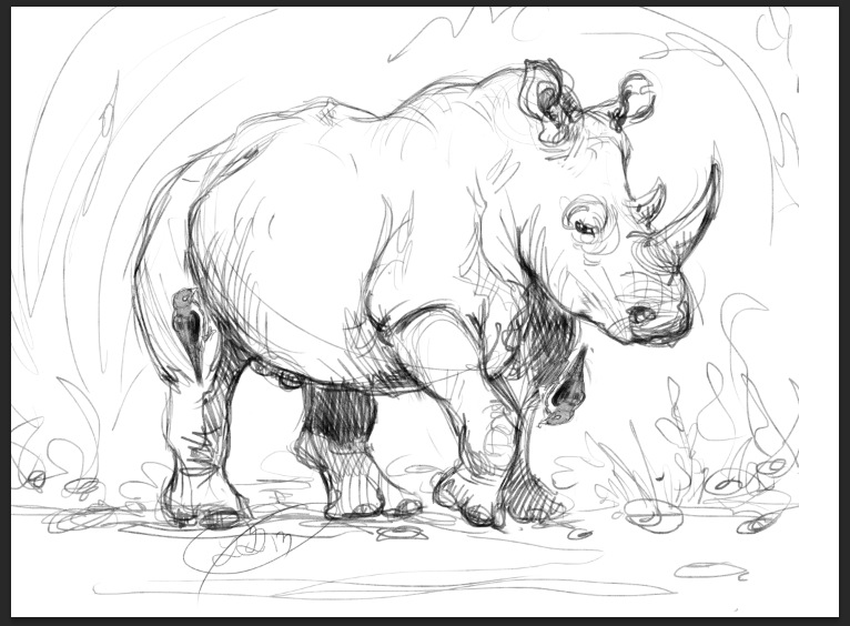 Drawn rhino white rhino On by White White Rhino
