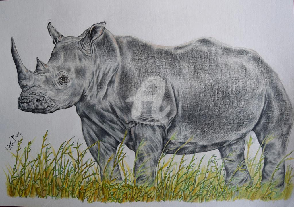 Drawn rhino white rhino Paper 58x41 white ©2016 by