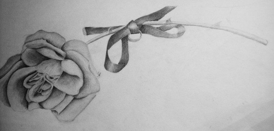 Drawn ribbon pencil drawing Art Drawings Drawings Free And