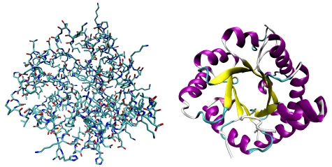 Drawn ribbon protein Abstracted atoms as Protein and