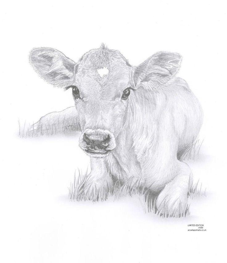 Drawn cattle sun #1