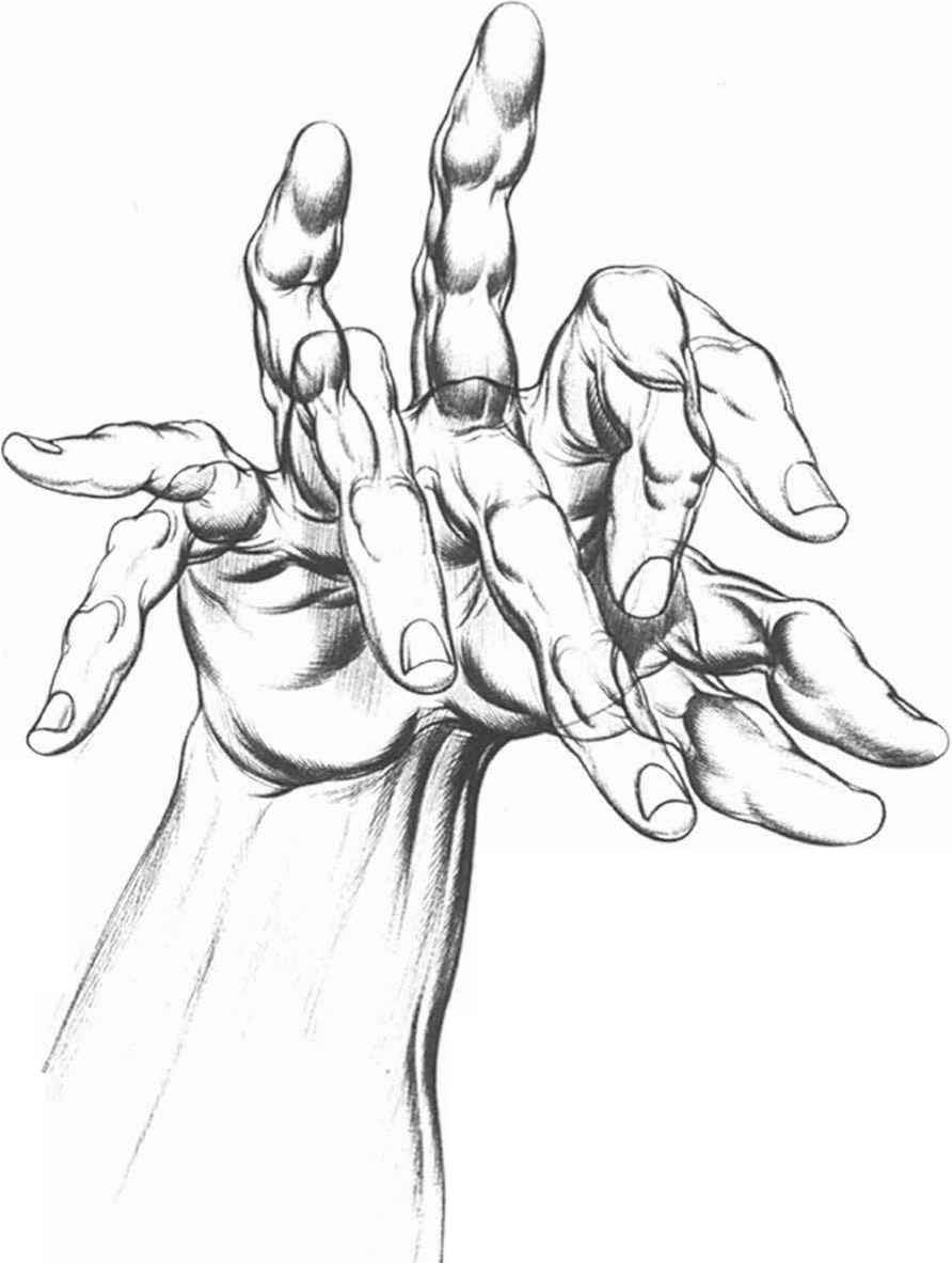 Drawn fist hand movement Positions Arts Pointing Inked Joshua