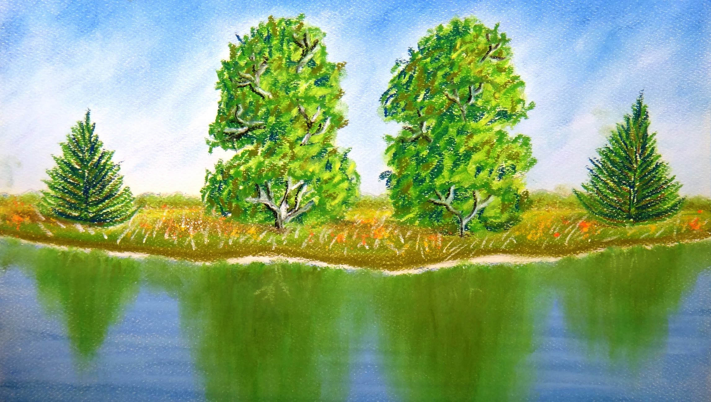 Drawn scenic color Draw How trees water with